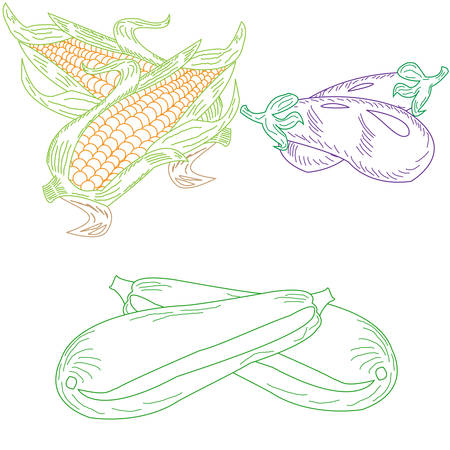 vegetarianism: set drawn dudovich vegetables, corn, eggplant, zucchini