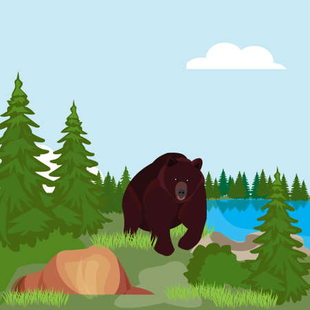 scandinavia: Brown bear in the Northern woods, in a forest clearing near the pond. Doodle style vector illustration Illustration