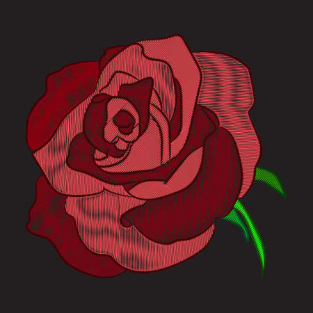 Embroidery red rose on black background. Stock line vector illustration. Illustration
