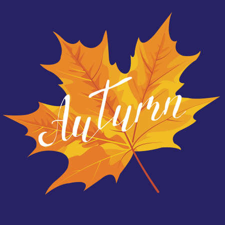 Autumn, hand lettering, quotes.Modern motivation calligraphy, typography for the poster, invitations, greeting cards.Vector design lettering