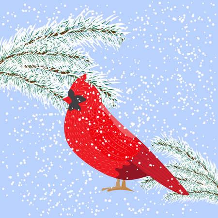 Winter snowy day, bird Cardinal looks at the snowy fir-tree, vector Illustration Illustration