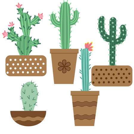Cactus flower in pots for flowers and plants. Bright cacti, aloe leaves, exotic cacti plants juicy summer desert tropical flora cartoon, Botanical vector collection