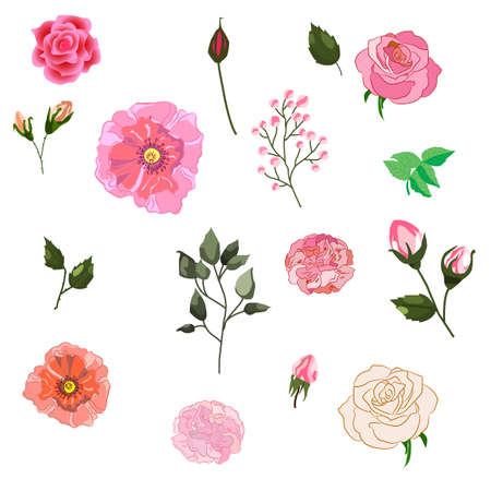 Vector set of isolated Rose buds with leaves. Handmade watercolor style illustration of flowers. Beautiful realistic vector elements for invitation, wedding or greeting cards Illustration