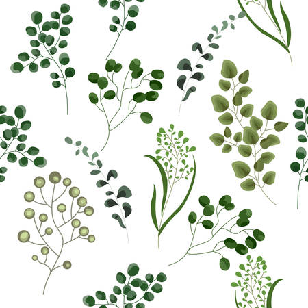 Decorative beauty elegant illustration for design, wedding, invitation cards. Vector elements of forest fern, tropical green eucalyptus greenery art foliage natural leaves herbs in watercolor style.