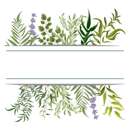 Vector card floral design with green watercolor fern leaves tropical forest greenery herbs decorative frame, border. Elegant beauty cute greeting, wedding invite, postcard template.
