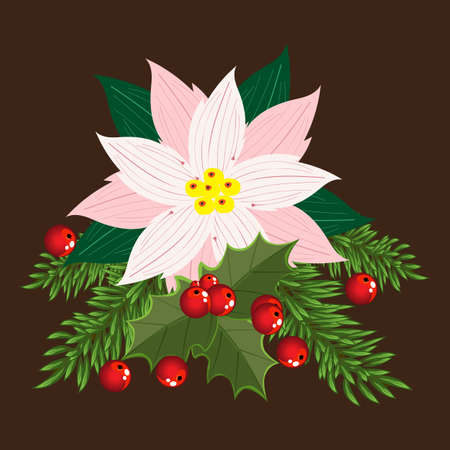 Christmas arrangement, poinsettia, fir branches, Holly leaves and red berries of mistletoe. Vector illustration for postcards, banners, posters, greetings, covers and cards