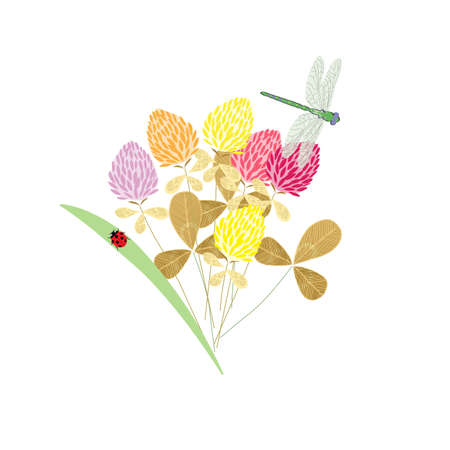 Meadow delicate bouquet with spring flowers and insects butterflies, dragonflies and beetles, spring pattern, for postcards, packaging, web design, vector illustration