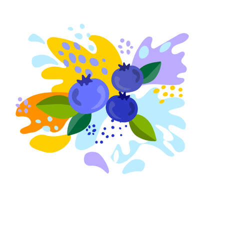 Spray and drop, the movement of the liquid, blueberries, splash of juice and yogurt, drops and stains. Abstract vector illustrations Illustration
