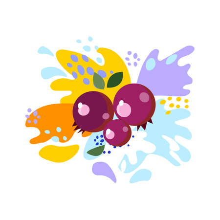 Splashes and falling, motion of a fluid, cranberries with a splash of juice and yogurt, drops and stains. Abstract vector illustrations
