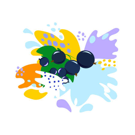 Splash and fall, movement of liquid, black currant in splashes of juice and yogurt, drops and spots. Abstract vector illustrations Illustration