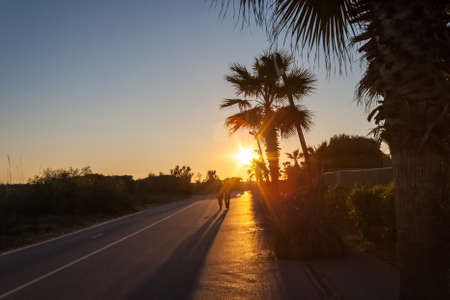 Couple walking holding hands with sunset and palms