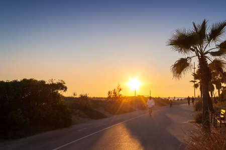Man running on the sunset next to the beach and palms Stock Photo
