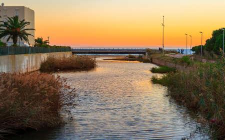 Beautiful orange sunset on the river with vegetation