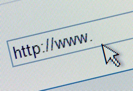 websurfing: Macro screenshot of http:www. search bar