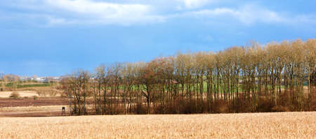 contryside: In the contryside - early spring time Stock Photo
