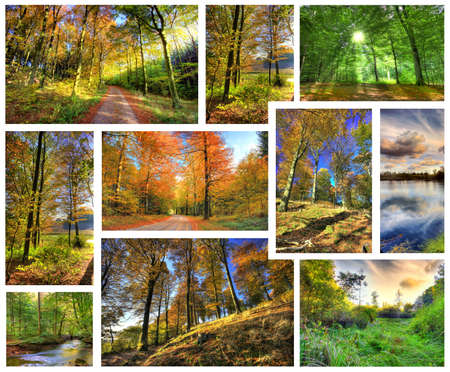 Wonderful autumn colors on a sunny day Stock Photo - 3280830