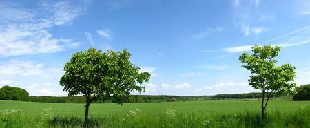 A beautiful landscape photo from the countryside of Denmark Stock Photo - 3663400