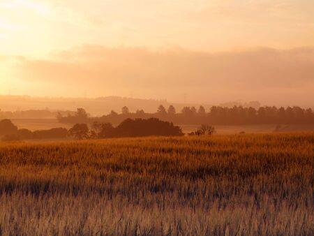 Early morning - summer sunrise Stock Photo - 5191595