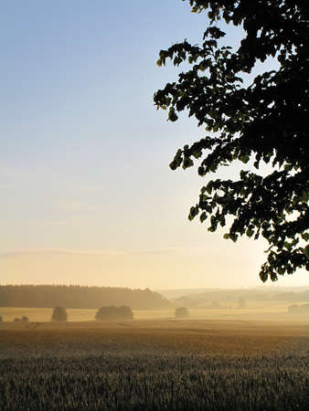 Sunset - the Danish countryside Stock Photo - 7292467