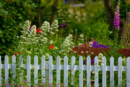 wooden fences: A  fence in a beautiful garden