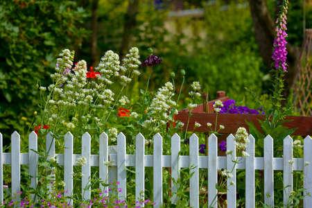 cerca blanca: Una valla en un hermoso jard�n