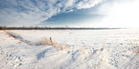 Winter landscape on a sunny day with blue sky photo