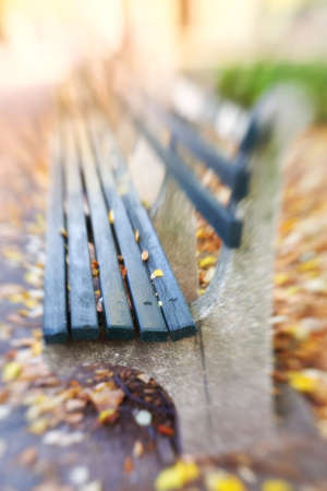 A lens blurred photo a bench in autumn. Central Park. photo