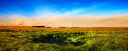 Ein Foto von Sonnenuntergang auf dem Lande im Sommer