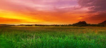 Ein Foto von Sommer Sunset - extreme DOF (TiltShift-Objektiv verwendet)