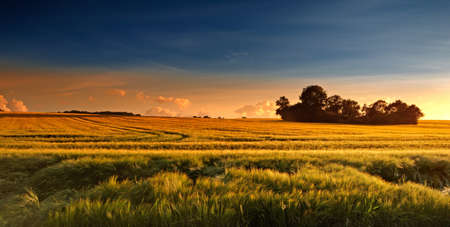 scenic: Sunset in the countryside in late summer - lots of copyspace Stock Photo