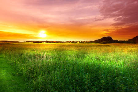 A sunset in the countryside at summertime photo