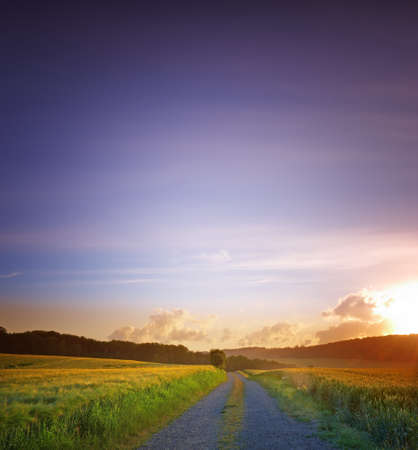 dirt road: A sunset photo of road and countryside