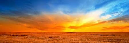 Sonnenuntergang auf dem Lande im Spätsommer - viele Exemplar Standard-Bild