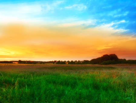countryside landscape and  with extreme DOF (tilt/shift lens used) Stock Photo - 8439412