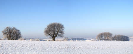 An outdoor photo of winter landscape beauty photo