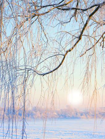 Ein im freien Foto von Schönheit Winter Landschaft