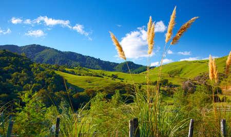 뉴질랜드의 아름다운 풍경 사진 스톡 콘텐츠