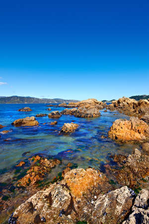 The famous rocks at Karaka Bay, Wellington, New Zealand Stock Photo - 9541473