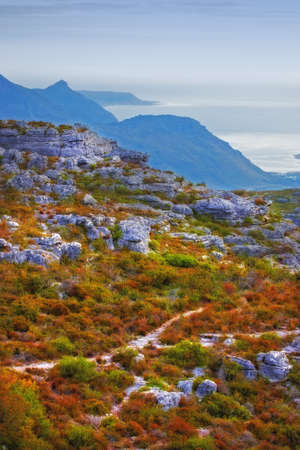 A landscape photo from South Africa, close to Cape Town  photo