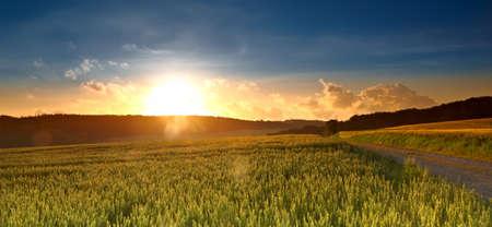 Ein Sonnenuntergang Foto von Straßen-und Landschaft