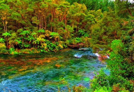 A photo of beautiful New Zealand photo