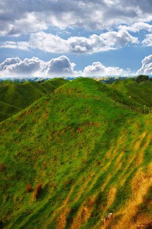 a photo of Farmland - New Zealand Stock Photo - 10722498