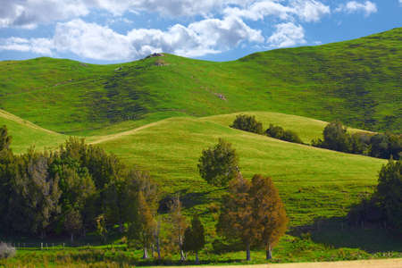 a photo of Farmland - New Zealand photo