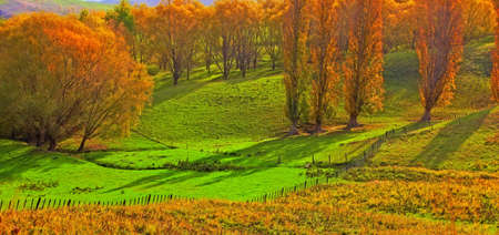 A  photo of Sunrise in autumn in New Zealand photo