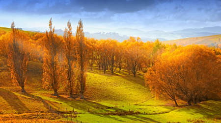 A  photo of Sunrise in autumn in New Zealand Stock Photo