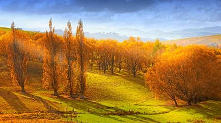 A  photo of Sunrise in autumn in New Zealand Foto de archivo