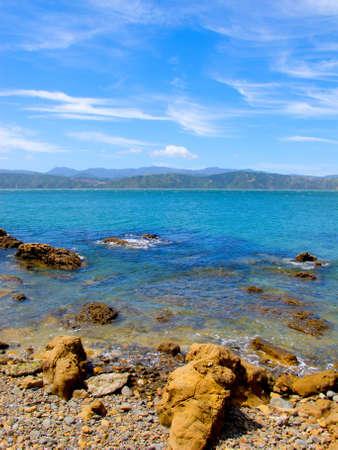 new zealand beach: A  photo of Coastline - Wellington, New Zealand