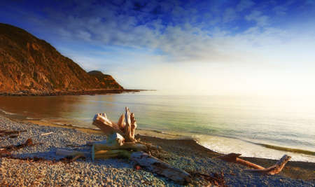 night scenery: A photo of sunrise at the coast near Wellington, New Zealand Stock Photo