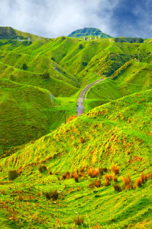 A photo of green hills in New Zealand (North) photo