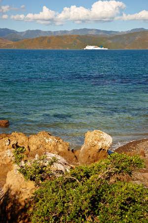 littoral: A photo of a Rocky Coast near Wellington, New Zealand